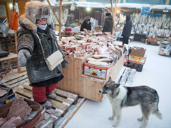 Sakha (Yakut) Turks and life in Yakutia